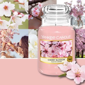 Candles Cherry Blossom