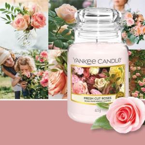 Kaarsen Fresh Cut Roses