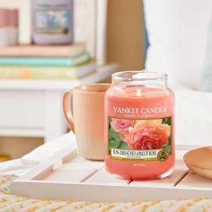 Bougies Rose Succulente