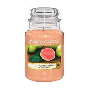Yankee Candles Delicious Guava